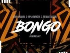 Afro Warriors - Bongo ft. Jim MasterShine & Duplo Impacto